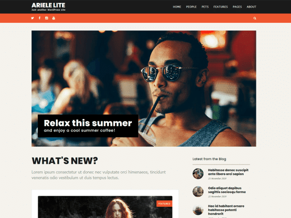 ariele lite wordpress theme