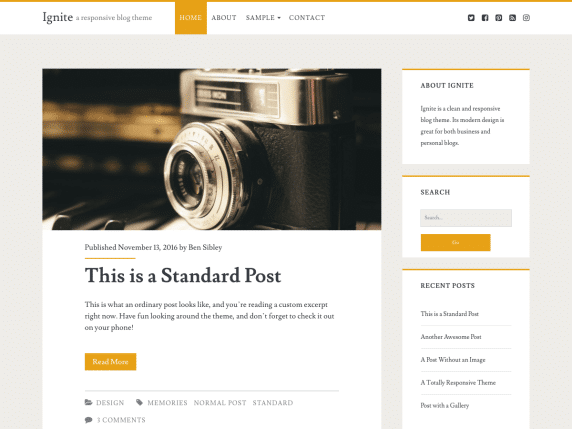 ignite wordpress theme